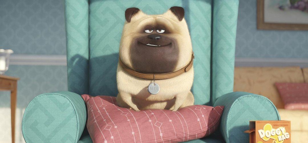 The Secret Life of Pets - 'Snowball' Trailer 4