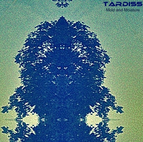 Tardiss – Mold and Moisture