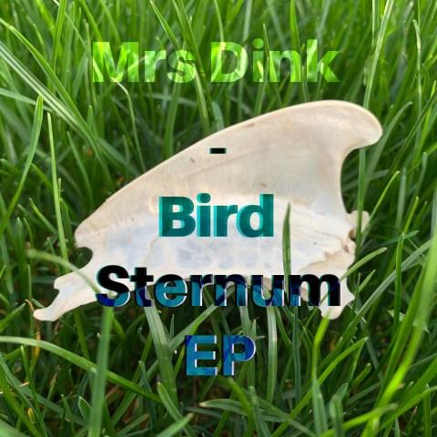 Mrs Dink – Bird Sternum