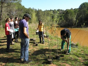 ANG voluntariat ambiental basses Sant Daniel 2