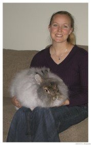 Katie and Perseus, 2012 Top Wool Producer 2032 g./an.
