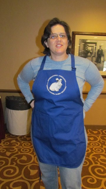 Robin modeling the new IAGARB aprons