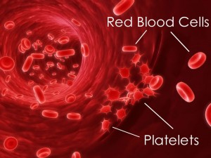 Blood_Health_Red_Platelets_800px