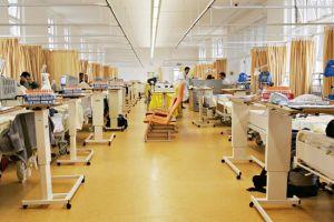 Swine flu clinical trials