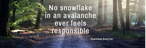 No snowflake in an avalanche ever feels responsible