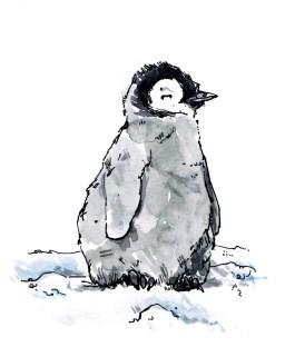 penguin-three