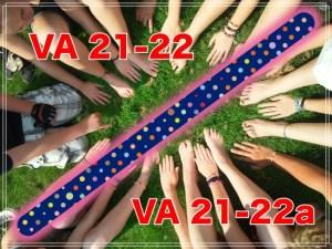 VA Form 22