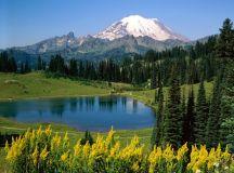 25222d1235656623-nature-photos-wallpapers-images-beautiful ...