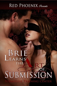 AudioBook Review: Brie Learns the Art of Submission: Submissive Training Center #1-9 by Red Phoenix