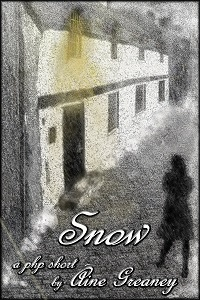 Snow by Áine Greaney
