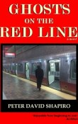 AudioBook Review Ghosts on the Red Line by Peter David Shapiro