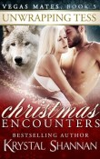 Unwrapping Tess: Christmas Encounters by Krystal Shannan with Excerpt and Giveaway