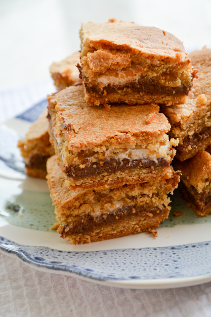 Baked S'mores Bars-02
