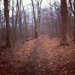blue hills trail