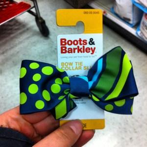 dog box tie