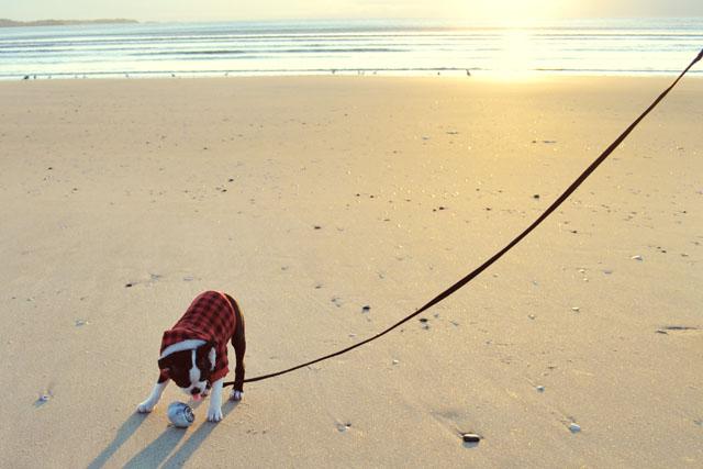 Kemper at the Beach_03