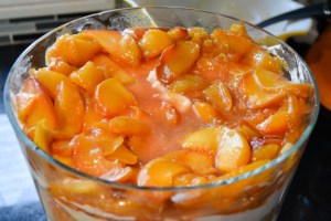Peach Pie Trifle-16