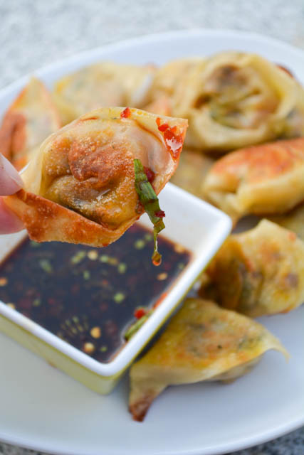 Vegetarian Wontons Spicy Soy Dipping Sauce-1