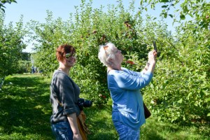 Applecrest Farm Apple Picking-18