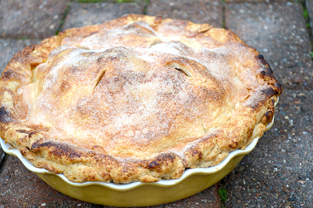 Cranberry Apple Pie_01
