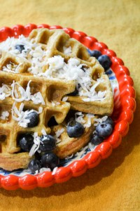 Paleo Coconut Waffles