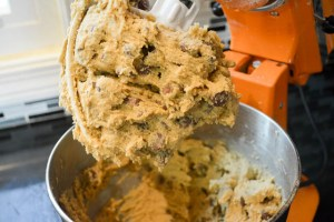 Orange Chocolate Chip Cookies-11