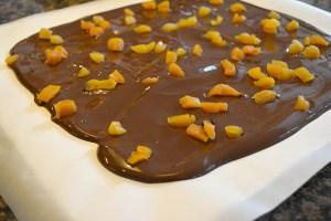 California Chocolate Bark_10