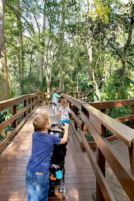 children walking on boardwalk under the trees at dinosaur world