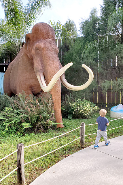 Boy on path, unphased by Woolly Mammoth at Dinosaur World in Florida