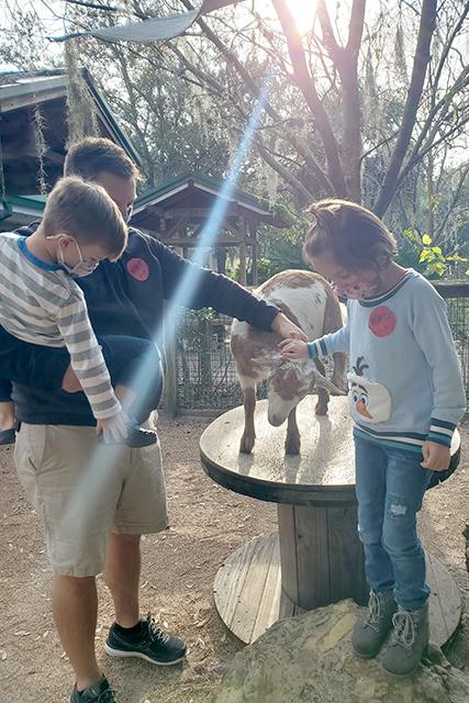 family petting a Nigerian Dwarf Goat