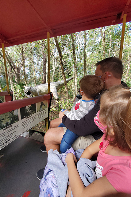 family enjoying train ride at Jacksonville Zoo looking at tractions on train route