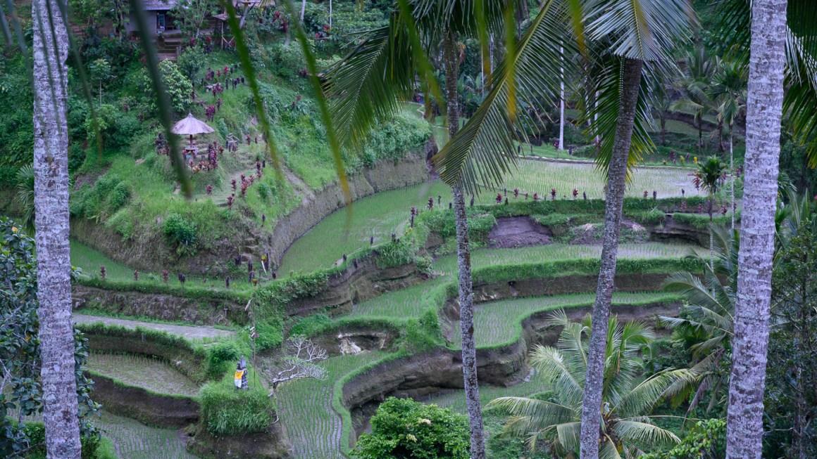 Hyatt Regency, Sanur Bali Indonesia
