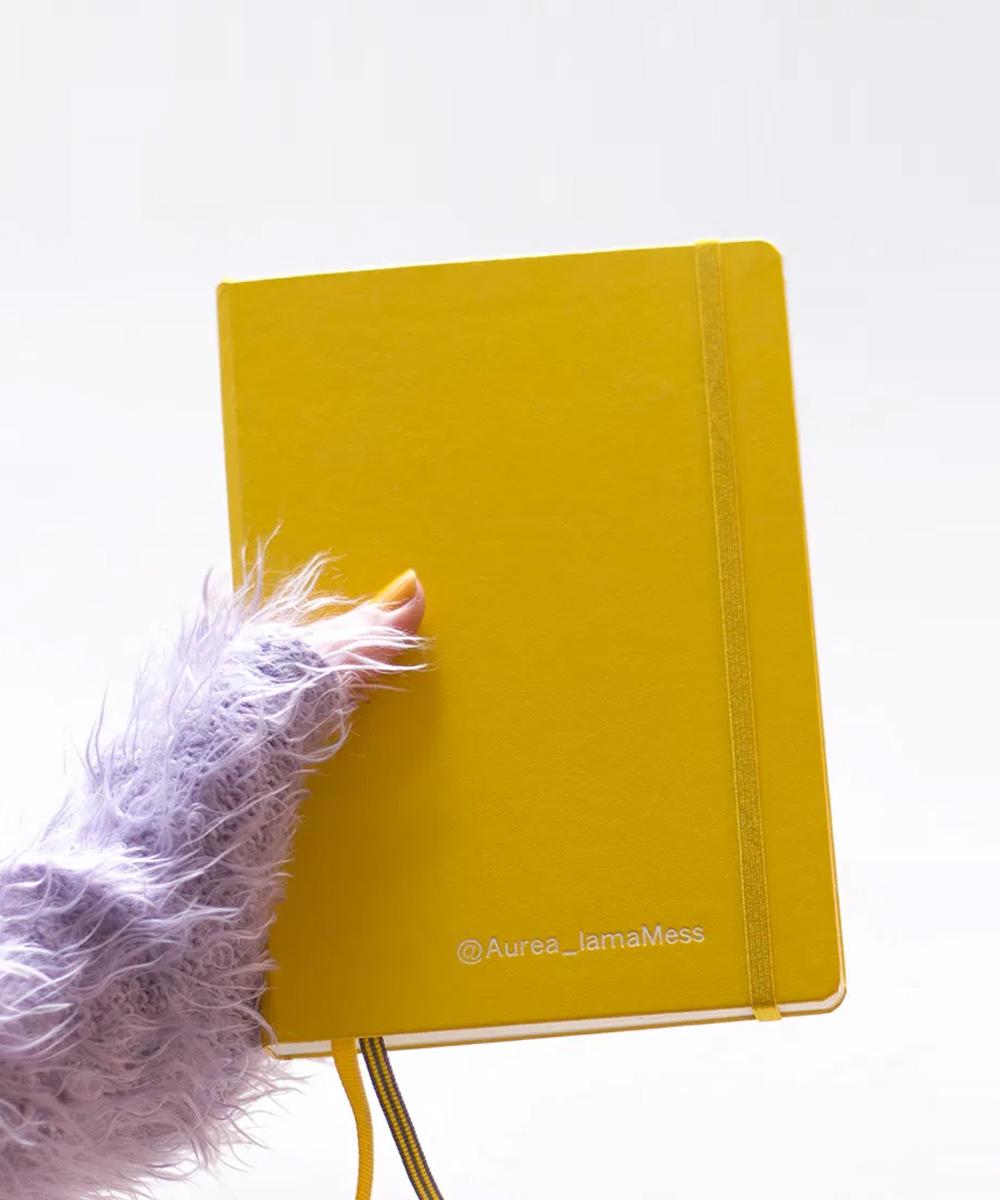 Pon un Bullet Journal en tu vida