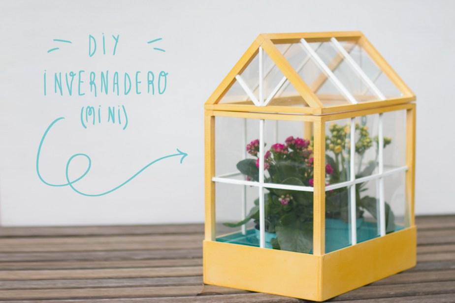 Mira que preciosidad de mini invernadero DIY ¡Aprende cómo hacertelo!