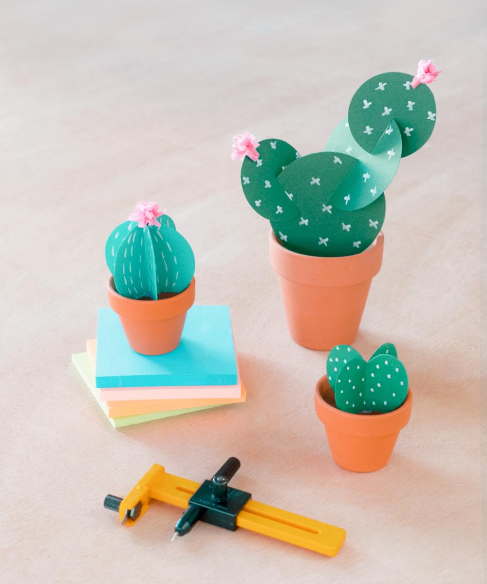 Tres cactus de papel