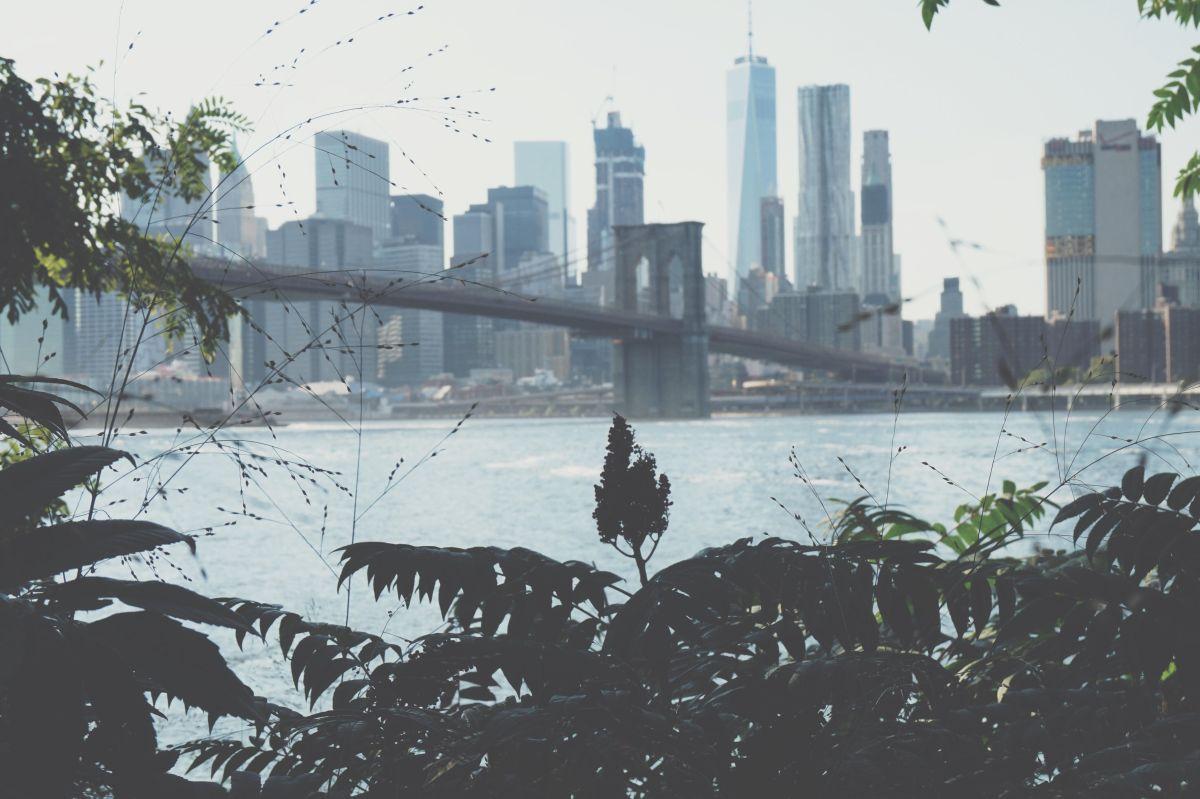 La realidad de Nueva York de @elnuevayorkdejoseph