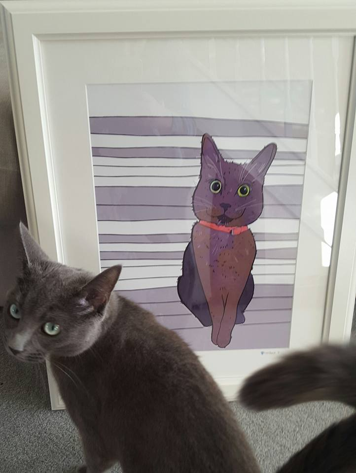 orla kitty with mandascat illustration of her