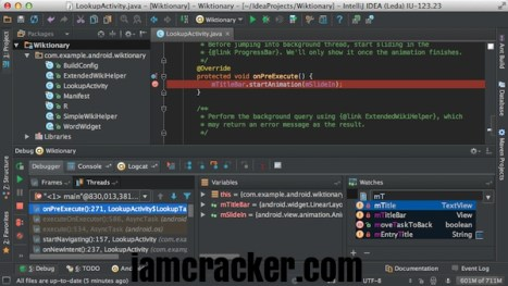 IntelliJ IDEA 2020.3 Crack Full License Key 2020 Activation Code