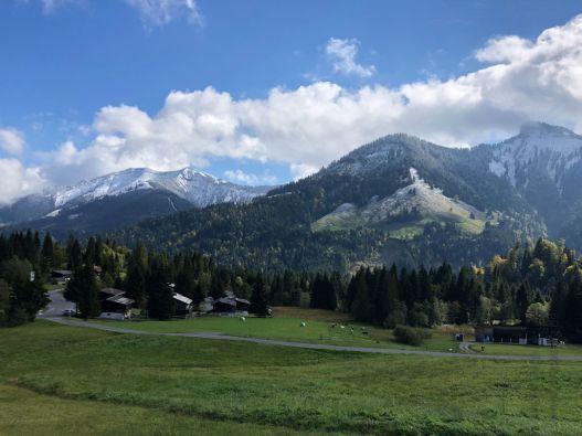 Neuschnee bei Dornbirn, Vorarlberg