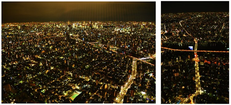 view-from-skytree