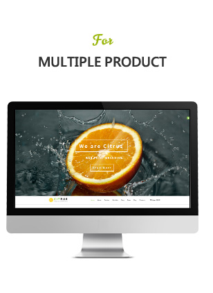 Citrus one page Shopify - 4