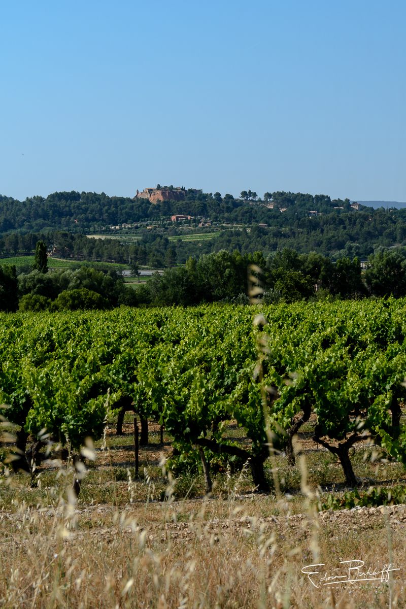 20170619_Provence_22220
