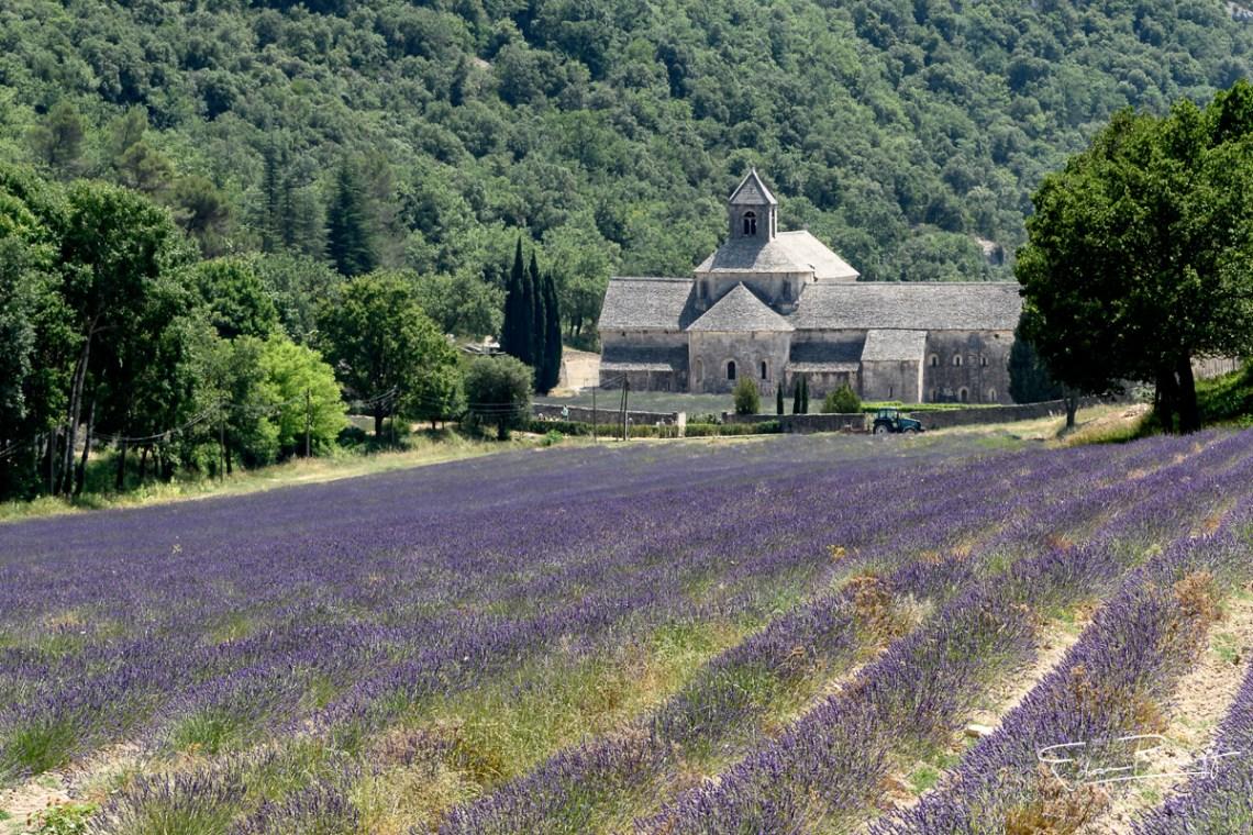 20170623_Provence_22572