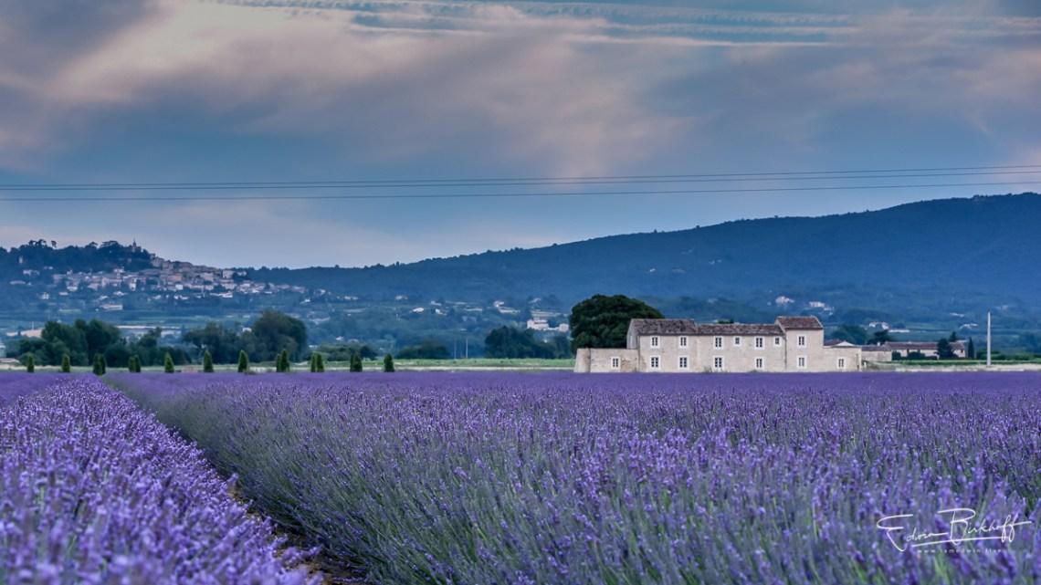 20170627_Provence_2895
