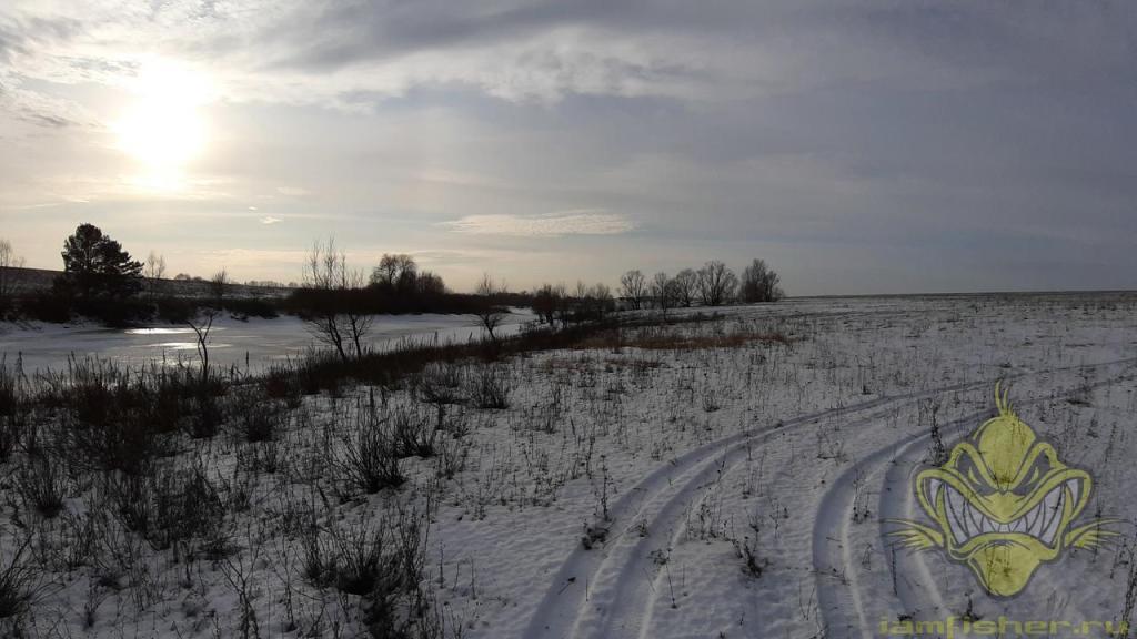 пруд Мутный