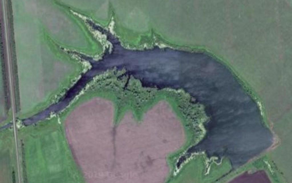 Камышовый пруд