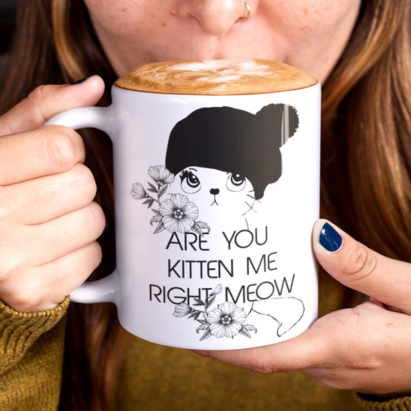 Are you kitten me right meow funny cat mug