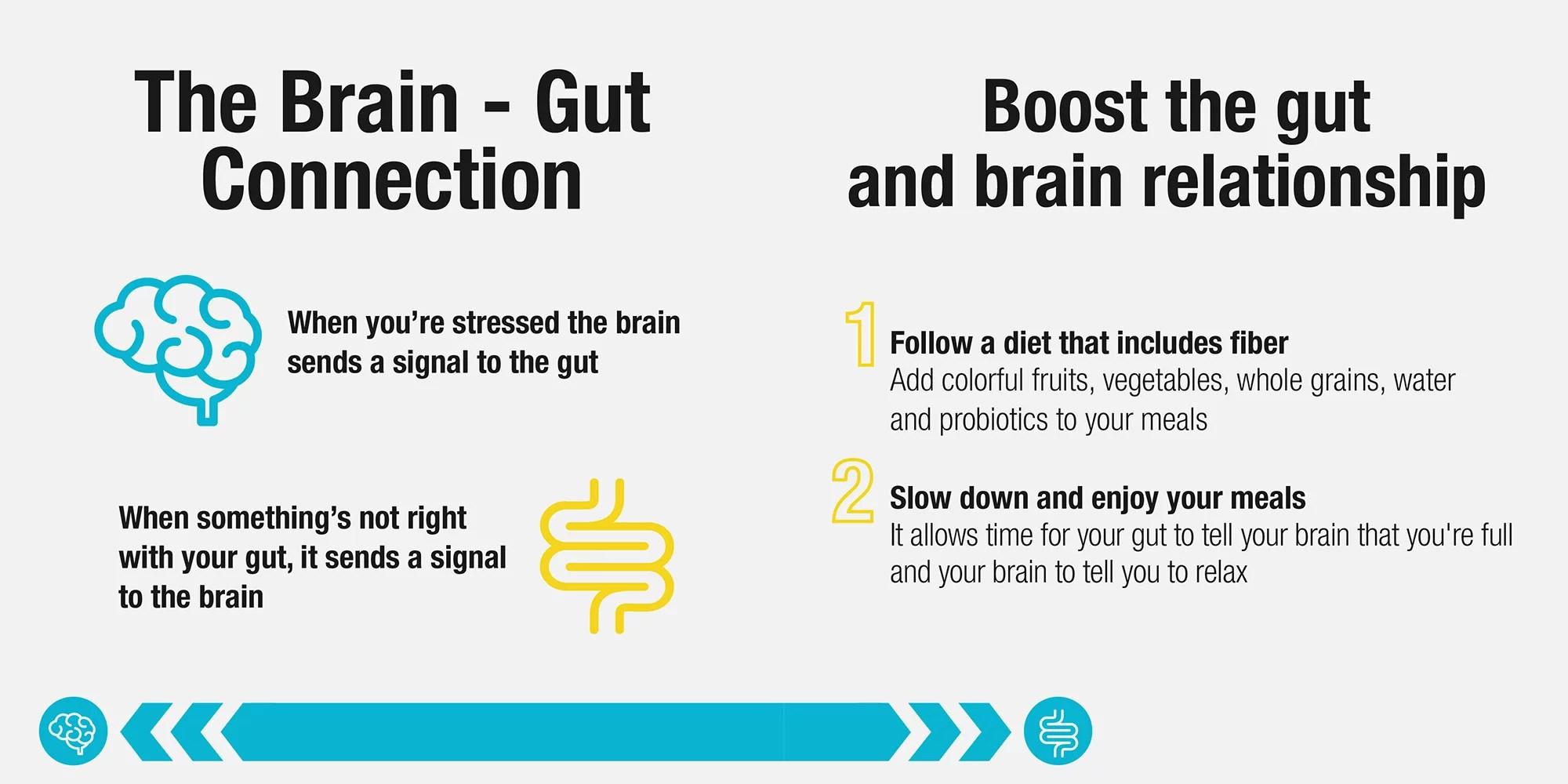 conexión cerebro-intestino