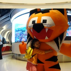 """""""Ajitora- the mascot spreading the Tx2 message of doubling number of tigers as the first Hong Kong Kids International Film Festival (kiff.asia) opened on Global Tiger Day as well"""