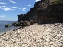 A very rocky shore